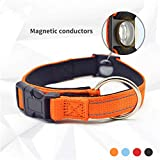 Nuoyi Pet Collar Reflective Magnetic Dog Collar Magnetic Pet Products Adjustable Bandwidth Diving Cotton Collar Adjustable 28-41Cm - Pet for 5-20Kg,Black