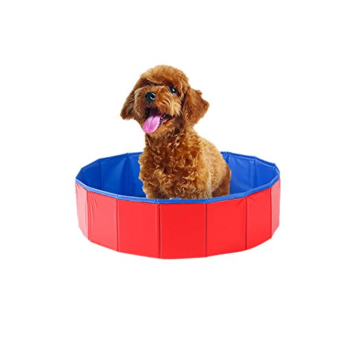 Chlove Faltbar Hundepool Große PVC Verschleißfest Badewanne Pool Spielzeug für Haustier80x20cm Blau+Orange