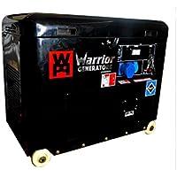 WARRIOR 5000 Watt Diesel Generator Notstromaggregat Stromerzeuger 230V EU