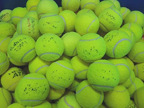 Ace Tennis Balls 30 Pelotas Tenis usadas Perros, Pelotas