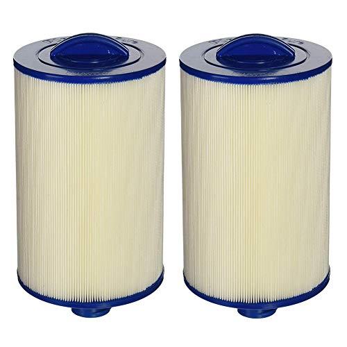 MYY Whirlpool Spa Filter FC689M antimikrobielle Ersatzfilterpatrone für Hydromaster, Grandmaster und Simplicty Spas (2Pack)