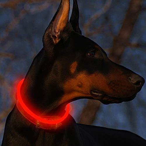 Fttouuy LED Leuchthalsband Hunde Halsband USB wiederaufladbar - Längenverstellbarer Haustier Sicherheit Kragen für Hunde und Katzen - 3 Modus (Rot) -