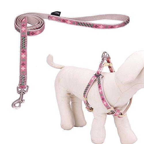 Touchdog Outdoor Durable Cassaforte Patterned Strong Nylon corda Cane cane da guinzaglio con confortevole manico schiumato e regolabile No Pull Set di cablaggio del cane