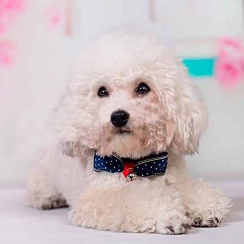 Bow Haustier Hunde Katze Krawatte (Dot) - 2