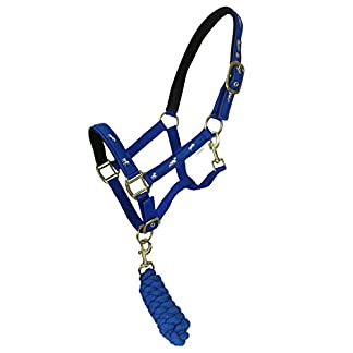 Equestrian Horse Riding Jumping Schooling Padded Bridle Headcollars And Halters And Colours 7