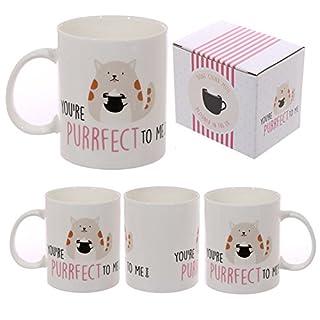 Cat Slogan New Bone China Mug