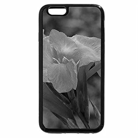 iPhone 6S Plus Case, iPhone 6 Plus Case (Black & White) - Canna Lily Glowing in Orange