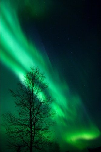 vibrating-aurora-borealis-arc-northern-lights-over-alaska-journal-150-page-lined-notebook-diary