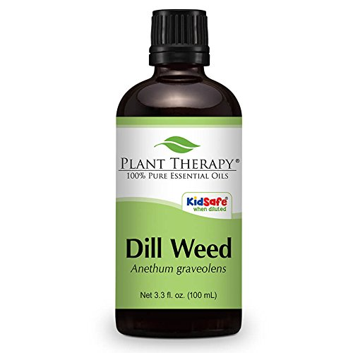Dill Weed Essential Oil. 100 ml (3.3 oz) 100% Pure, Undiluted, Therapeutic Grade