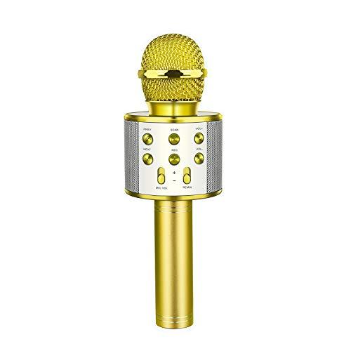 EUTOYZ Geschenke für Teenager Mädchen Jungen, Drahtlose Bluetooth Karaoke Mikrofon mit Lautsprecher für Erwachsene und Kinder Spielzeug Mädchen 3-12 Jahre Geschenke für Mädchen ab 3-12 Jahre Lila