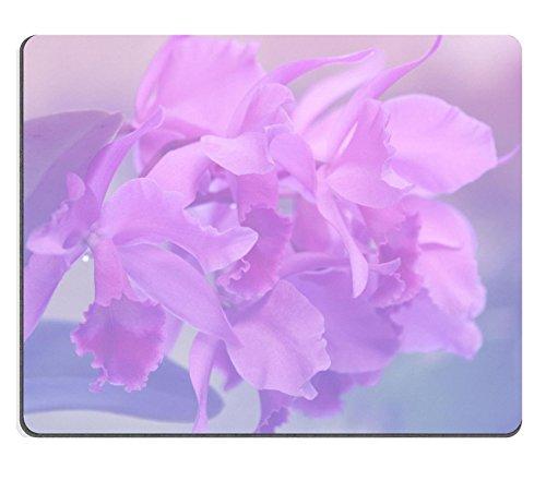luxlady-tapis-de-souris-gaming-id-41986321-larc-en-ciel-africaine-de-violet-orchidee