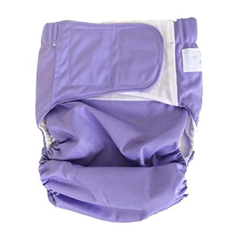 Dbtxwd Mehrwertige Inkontinenz-Diaper Cover Spezielle Bedürfnisse Inkontinenzbriefs Schutz für große Kinder, Teens und Erwachsene,Purple2,M