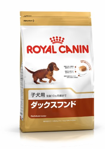 Royal Canin Dachshund Junior 1,5 kg, 1er Pack (1 x 1.5 kg)