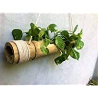 COIR GARDEN - Hanging Bamboo Planters with Adjustable Rope - Bamboo Stand - Bamboo Pot- Pack of 1