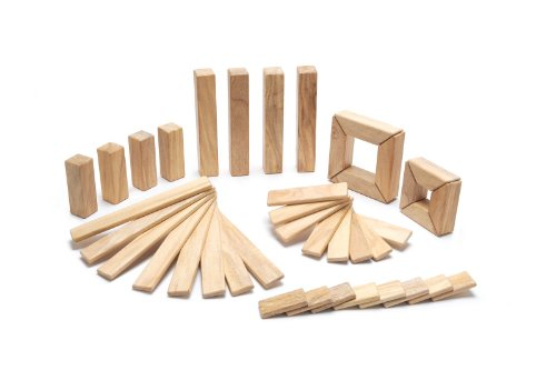 Tegu Magnetron Magnetic Wooden Block Set MSS-TL1-405T