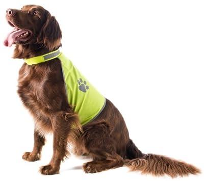 Sicherheitsweste für Hunde, neongelb, Gr. L