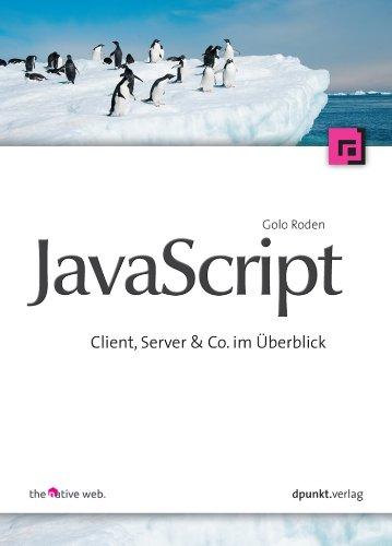 JavaScript: Client, Server & Co. im Überblick (German Edition)