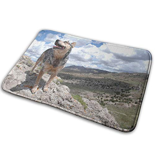 Dimension Art Australian Cattle Dog Memory Foam Bath Mat Non-Slip Absorbent Super Cozy Soft Velvet Bathroom Rug Carpet, 15.7