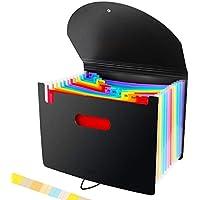 Carpeta Clasificadora - ABClife Archivador acordeón 12 Bolsillos de gran Capacidad soporte Extensible portátil acordeón Clasificador Documentos, Archivador A4 para Office School (12 Bolsillos Tapa)
