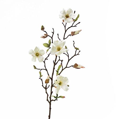 artplants Kunstblume Magnolienzweig LILO, 4 Blüten, Knospen, Creme-weiß, 75 cm - Seidenblumen Magnolie/Kunstzweig