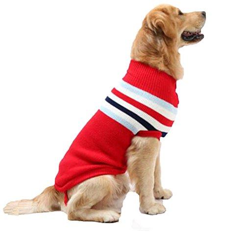 Cane caduta e abbigliamento invernale vestiti / maglione caldo /