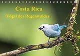 Costa Rica - Vögel des Regenwaldes (Tischkalender 2020 DIN A5 quer): Vögel des Regenwaldes Costa Ricas in ihrer ganzen Pracht (Monatskalender, 14 Seiten ) (CALVENDO Tiere) -