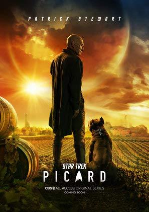 Star Trek : Picard - U.S Movie Wall Poster Print - 30cm x 43cm / 12 Inches x 17 Inches -