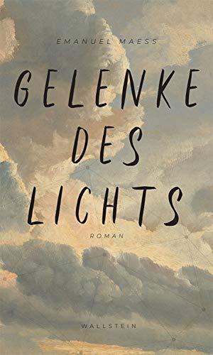 Gelenke des Lichts: Roman