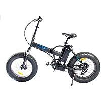20 Zoll SWEMO Alu Klapp Fat E-bike sw-20f Neu