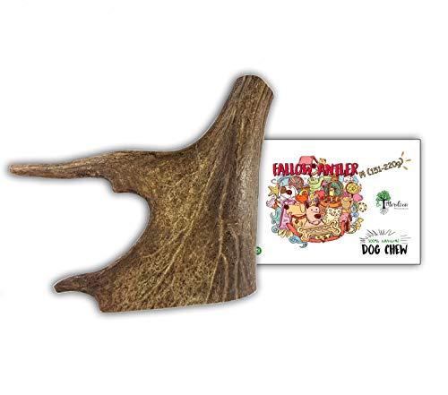 Bio Mordiscos Hundespielzeug kauspielzeug aus Damhirschgeweih für Hunde - 100% natürlich (M 151-220 g)