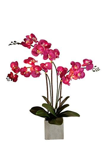 homeseasons LED-beleuchteten Künstliche triple-stem Phalaenopsis-Orchidee Arrangement (weiß)