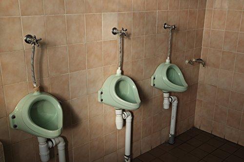 Problemas de la vejiga urinaria cancer: remedios naturales vejiga urinaria por alfredo gutierrez