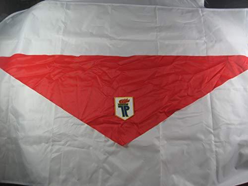 NVA Halstuch rot mit Aufnäher Junger Pionier Faschingsartikel ()