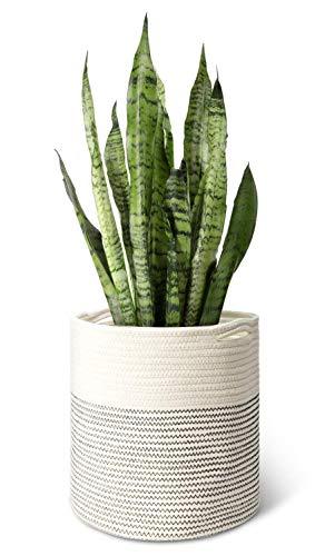 Mkouo Cuerda de algodón Tejida Canasta de Plantas for 28cm Maceta de Flores Jardineras de Interior, 31cm x 31cm Organizador de la Cesta de Almacenamiento Decoración del hogar Moderno