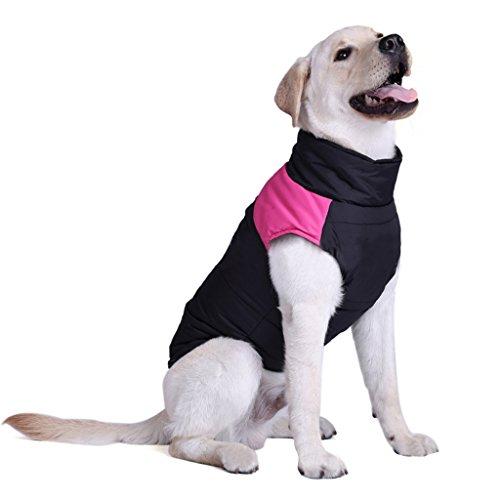 Größer Hundemantel wasserdicht Winterjacke Hundebekleidung Hundejacke Wintermantel Regenmantel