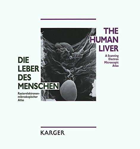 Die Leber des Menschen / The Human Liver: Rasterelektronenmikroskopischer Atlas / A Scanning Electron Microscopic Atlas