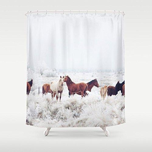 Winter shower curtains le meilleur prix dans Amazon SaveMoney.es
