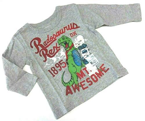 OshKosh B'Gosh Langarmshirt 62/68 grau Dinosaurier Junge USA Size 6 Month Oshkosh Usa-sweatshirt