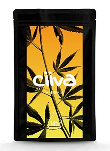 Ciiva Hanf-Tee AMNESIA 14,20% CB - Premium Qualität (3 Gramm) - Made in Italy - Naturbelassen, Vegan & Laborgeprüft - natürlicher Geschmack - aus Hanfblüten(kontrollierter Anbau) (Grüner Tee-öl-extrakt)