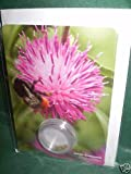 Portal Cool flower Samen Grußkarten, Lesser