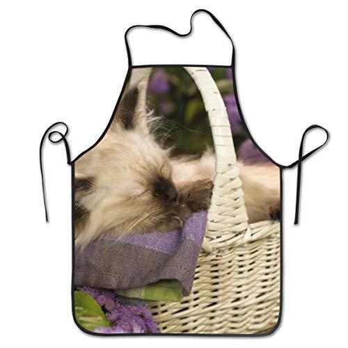 Kochschürze für Kätzchen zum Kochen, Backen, Basteln, Gartenarbeit und Grillen (Verkauf Zum Bärte)