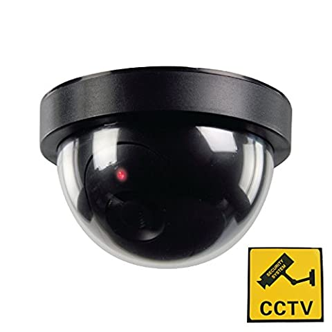 Phot-R P-DC10 Outdoor/Indoor IR Dome CCTV Security Dummy Camera with