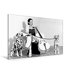 Premium Textil-Leinwand 120 cm x 80 cm quer, Ritenuto | Wandbild, Bild auf Keilrahmen, Fertigbild auf echter Leinwand, Leinwanddruck: Weißes Cello auf Reisen: Das Trio (CALVENDO Kunst)