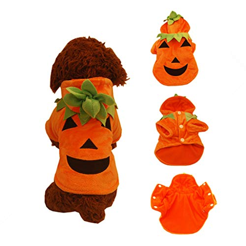 QIjinlook Haustier Kleidung der Halloween-Kürbis-Katzen-Hundepullover, HundeStrickwaren, Hundekleid, Haustier-Sweatshirt Hundekürbis Haustier Kleidung Hund Halloween Kostüm Kürbis (XL, Orange) (Chihuahua Jacke Camo)