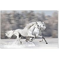 Startonight, luce nel buio Quadro su tela, galoppo Due cavalli bianchi 80 cm x 120 cm