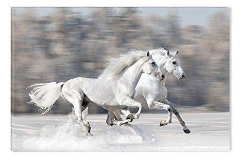 Startonight nachtleuchtendes Leinwandbild Zwei weiße Pferde galoppieren 120 cm x 80 cm