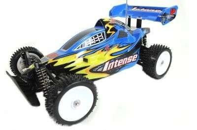 AMEWI 22104 Buggy Exceed Racing Coche Teledirigido, Colores Surtidos