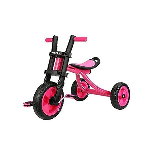 Fascol Tricycle Vélo et Véhicule 3 Roues pour Enfant Bébé 2 à 5 Ans Charge 25 kg, Rose