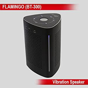 Persang Karaoke Flamingo Bluetooth Portable Speaker With USB / Audio Input / Rechargeable Battery