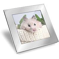 Sottobicchiere in vetro argentato, soffici criceti siriani, roditori per animali domestici, protezione da tavolo per qualsiasi tipo di tavolo #15830